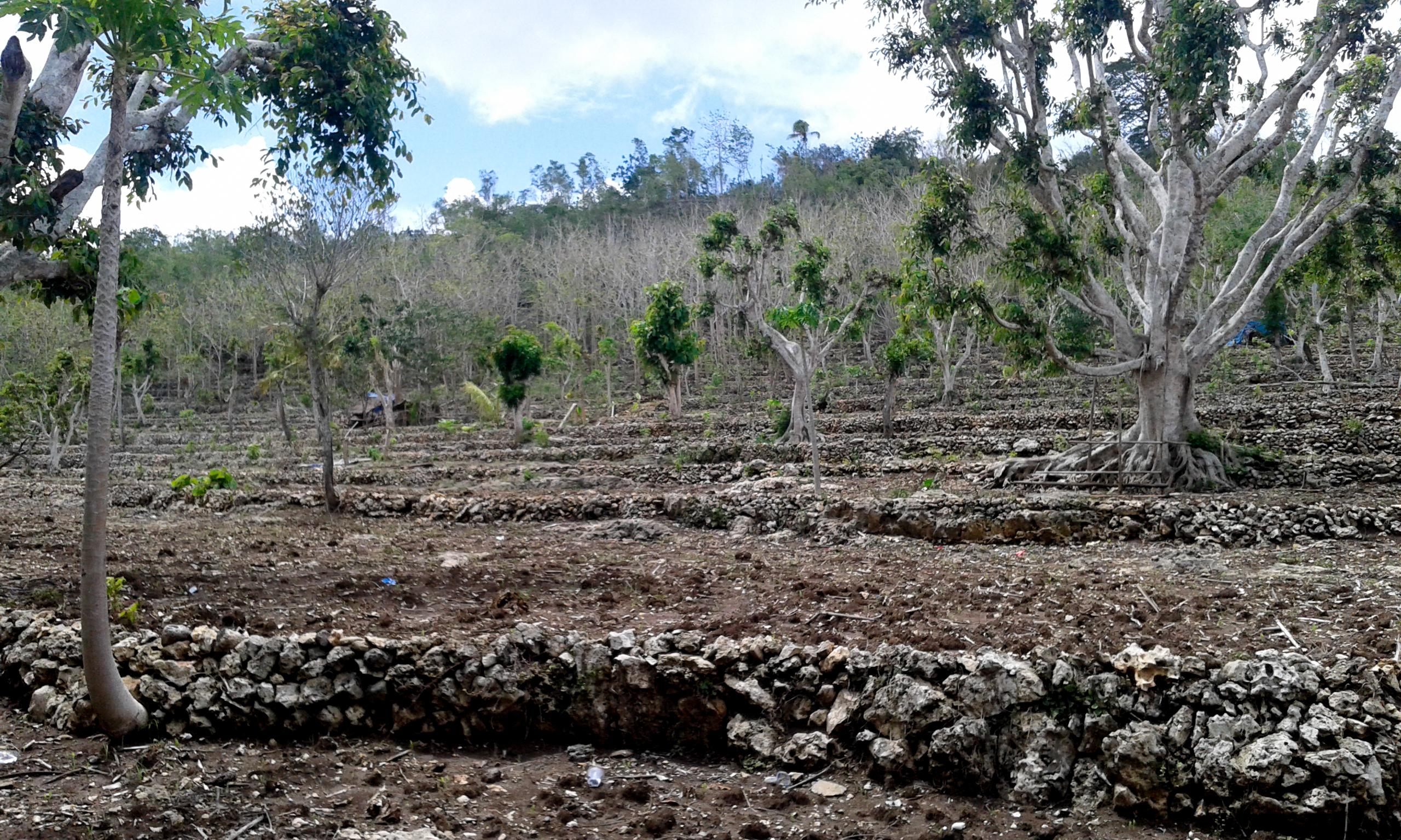 Dry Nusa Penida