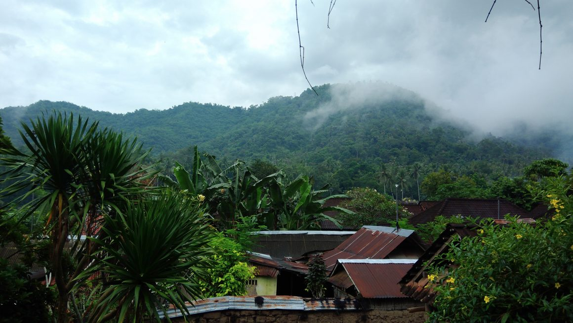 Recognition of the Tenganan Village Indigenous Forest