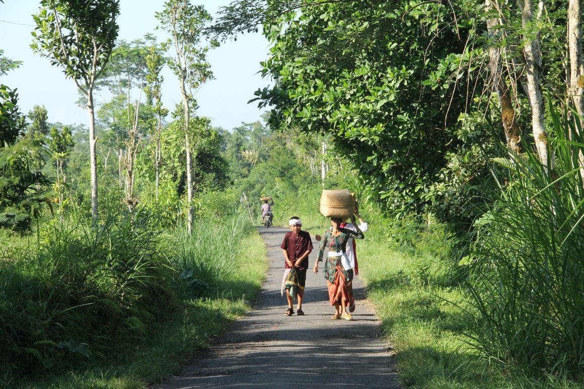 Desa Pengotan, Bangli